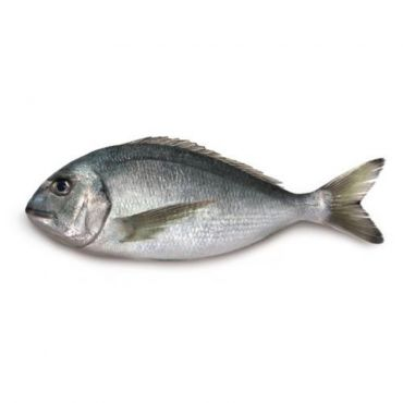 Black Sea Bream Fresh 400-600g
