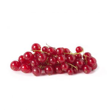 Red Currant 125g/Dish