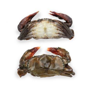 Soft Shell Crab Frozen 1kg/Tray